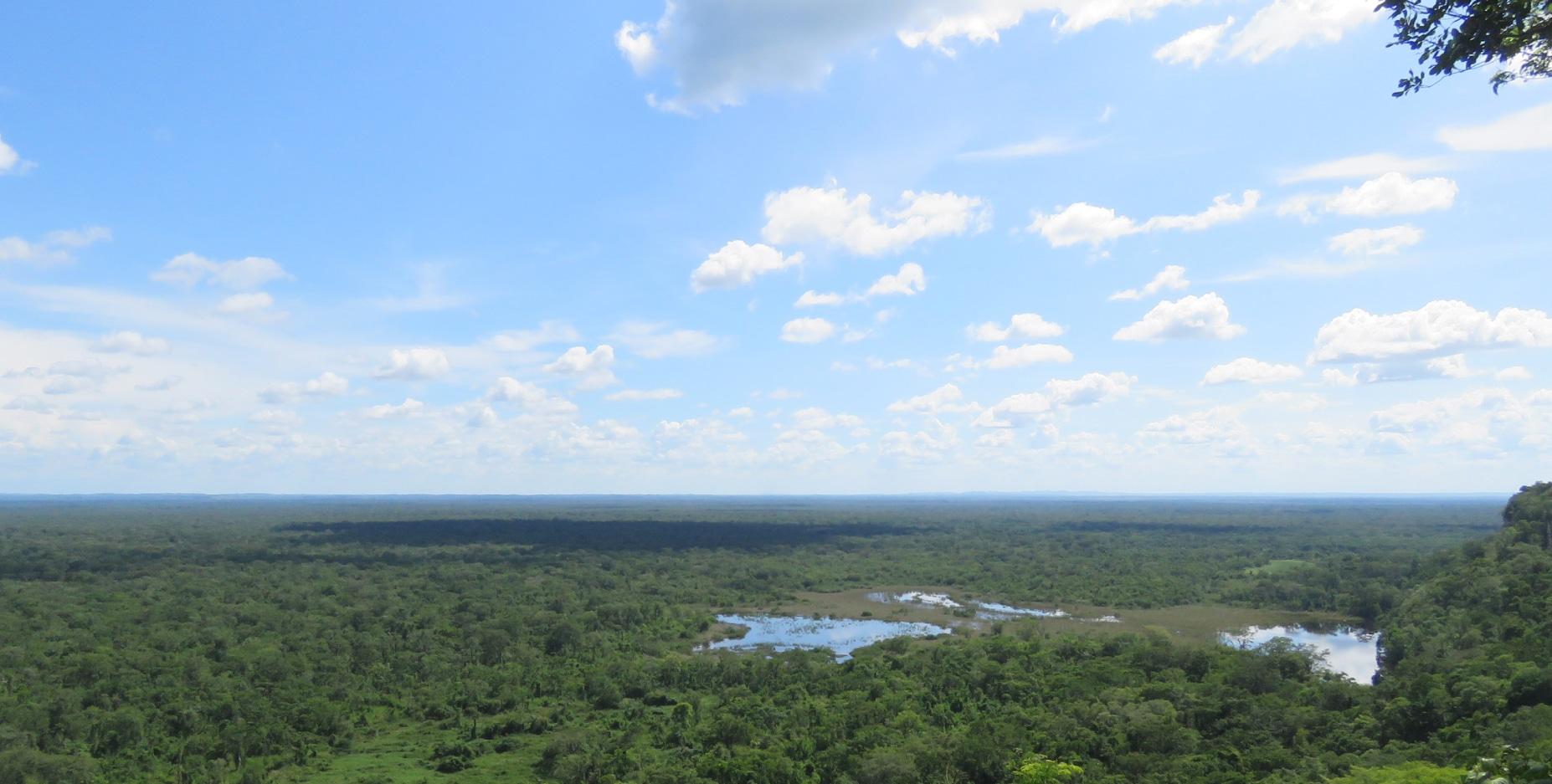AgroAmerica se ubica dentro de las 10 empresas sostenibles de aceite de palma en el mundo