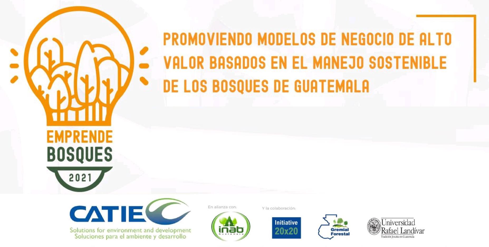 Promoviendo modelos de negocio de alto valor basados en el manejo sostenible de los bosques de Guatemala