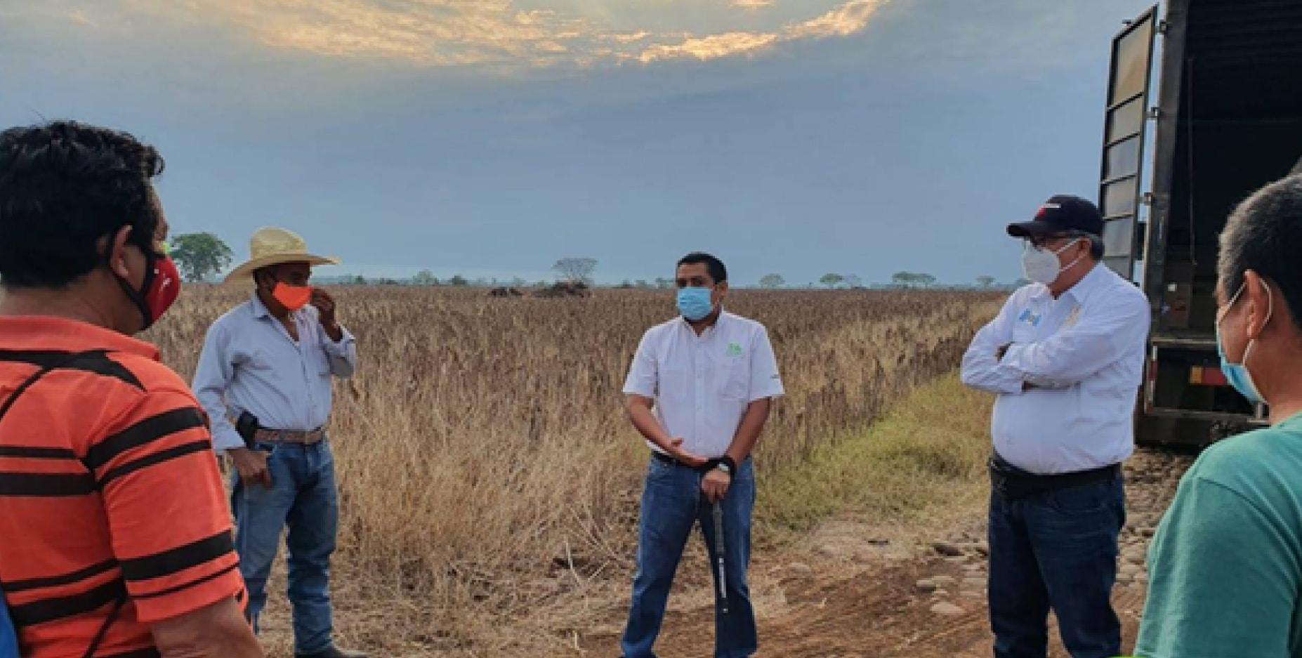 Ingenio Magdalena apoya para el control y erradicación de la Langosta Centroamericana